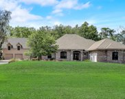161 WILLIAMS PARK RD, Green Cove Springs image