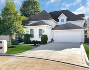 16323 Knightrider Drive, Spring image