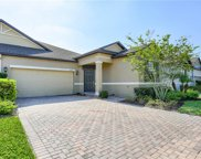 17054 Balance Cove, Land O' Lakes image