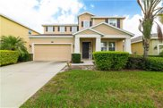 12208 Legacy Bright Street, Riverview image