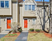 3 Hunters Run Pl Unit 3, Haverhill image