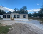 9678 137th Landing, Live Oak image