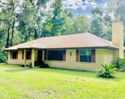 20421 Nw 190th Ave 32643, High Springs image