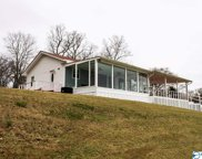 1193 County Road 414, Town Creek image