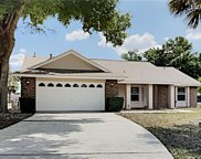 1025 Lester Ridge Court, Kissimmee image
