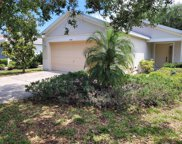 11348 Palm Island Avenue, Riverview image