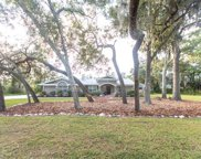 6874 County Road 95, Palm Harbor image