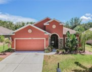 11232 Belle Haven Drive, New Port Richey image