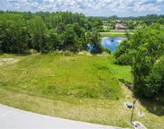 3938 Cove Lake Place, Land O' Lakes image