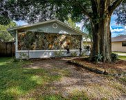 15705 Squirrel Tree Place, Tampa image
