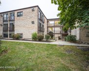 1960 Cherry Lane Unit #201, Northbrook image