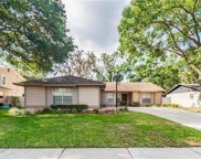17518 Willow Pond Drive, Lutz image