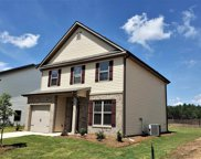 259 Bickley View Court, Chapin image