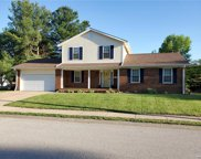 317 Nancy  Drive, O'Fallon image