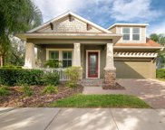15532 Starling Crossing Drive, Lithia image