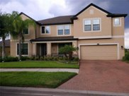 13328 Sunset Shore Circle, Riverview image