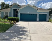 4317 Canongate Court, Spring Hill image
