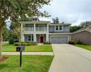16115 Courtside View Drive, Lithia image