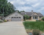 10296 Harpers Ferry  Court, Whitmore Lake image