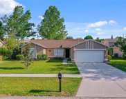 13124 Baneberry Court, Clermont image