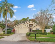 516 Saddell Bay Loop, Ocoee image