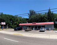 2124 S 78th Street, Tampa image
