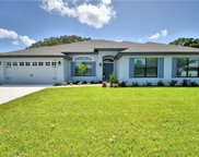 13249 Summerfield Way, Dade City image