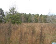 Tract # 6 County Road 142, Sand Rock image