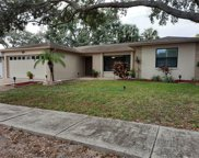 1830 Willow Oak Drive, Palm Harbor image