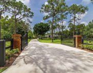14289 Banded Racoon Drive, Palm Beach Gardens image