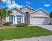 4518 Havelocke Drive, Land O' Lakes image
