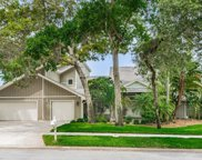 2374 Indian Trail E, Palm Harbor image