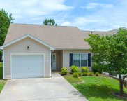 1020 Ashley Michelle Court, Knoxville image