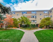 7427 North Ridge Boulevard Unit LGF, Chicago image