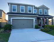 11082 Spring Point Circle, Riverview image