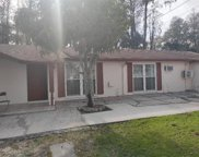 10313 Orchard Hills Court, Tampa image