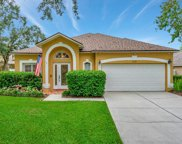 3732 Golden Eagle Drive, Land O' Lakes image