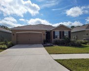 31510 Tansy Bend, Wesley Chapel image