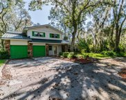 7420 Whitehouse Drive, Riverview image