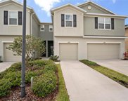 8847 Turnstone Haven Place, Tampa image