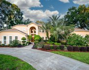 11310 Grandview Drive, Dade City image