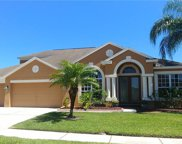 10234 Meadow Crossing Drive, Tampa image