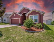 30726 Water Lily Drive, Brooksville image