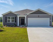 224 Captiva Cove Loop, Pawleys Island image
