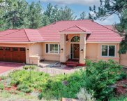 9630 S Perry Park Road, Larkspur image