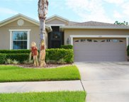 11221 Flora Springs Drive, Riverview image