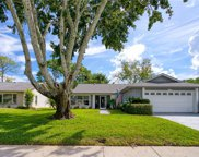 3148 Brunswick Circle, Palm Harbor image