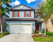4507 Savannah Holly Place, Riverview image