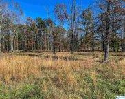 County Road 131, Cedar Bluff image