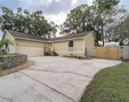 3829 Biscay Place, Land O Lakes image